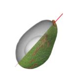 Avocado - Q Eye XP - Biometic's Food Safety Solutions